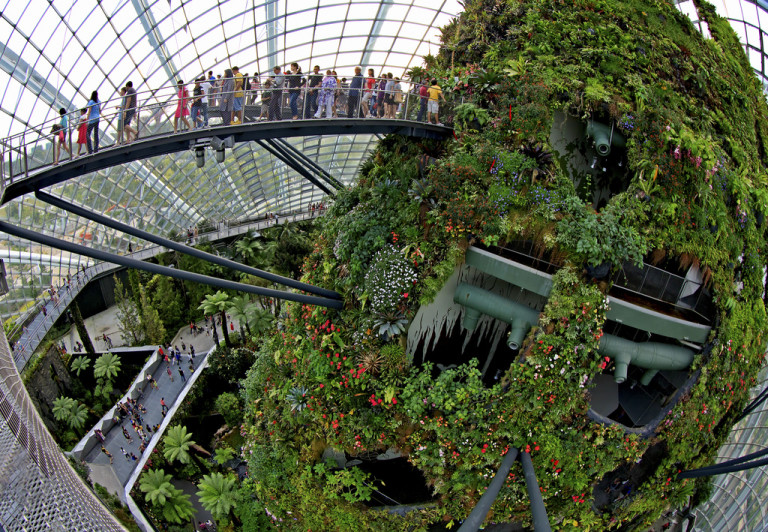 Cloud Forest - Singapore