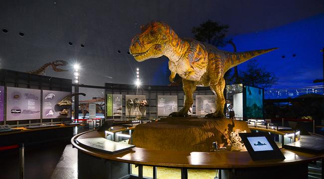 001 JAPAN Fukui Prefectural Dinosaur Museum